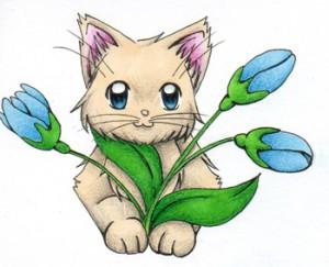 katzen Pflanze